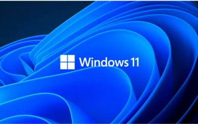 What is next for Windows?